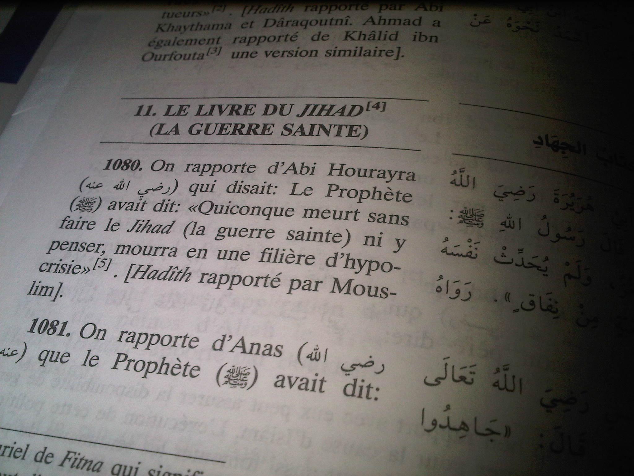 """Page du fameux traité de droit islamique """"La Réalisation du But"""" de Ibn Hajar (1372- 1448) , Grand cadi (juge) d'Egypte."""