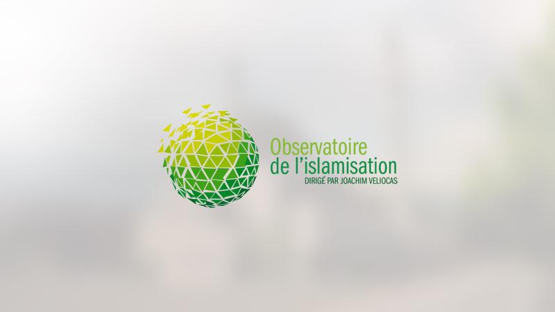 Strasbourg : recours contre le permis de construire d'une énorme mosquée turque